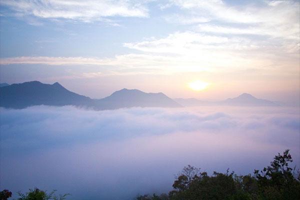 ทะเลหมอกภูทอก เชียงคาน