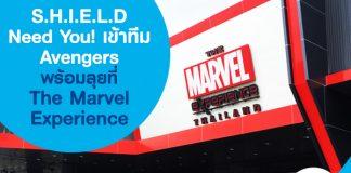 S.H.I.E.L.D Need You! เข้าทีม Avengers พร้อมลุย ที่ The Marvel Experience