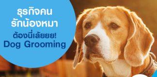 ธุรกิจคนรักน้องหมาต้องนี่เล้ยยย! Dog Grooming