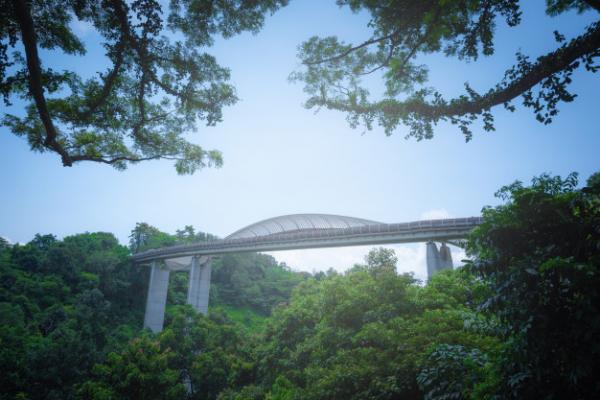 5 ที่เที่ยวสิงคโปร์ ฉบับสายเขียว เที่ยวชมธรรมชาติ