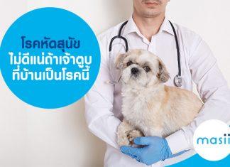 โรคหัดสุนัข ไม่ดีแน่ถ้าเจ้าตูบที่บ้านเป็นโรคนี้